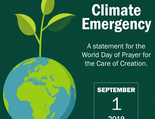 Statement by Canada's Catholic Sisters Regarding the Climate Emergency